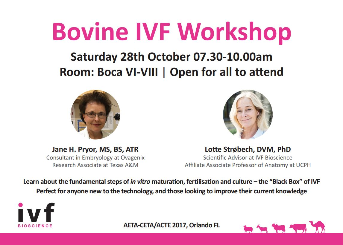 Bovine Workshop Details