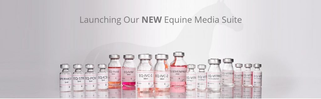 Equine ICSI product launch