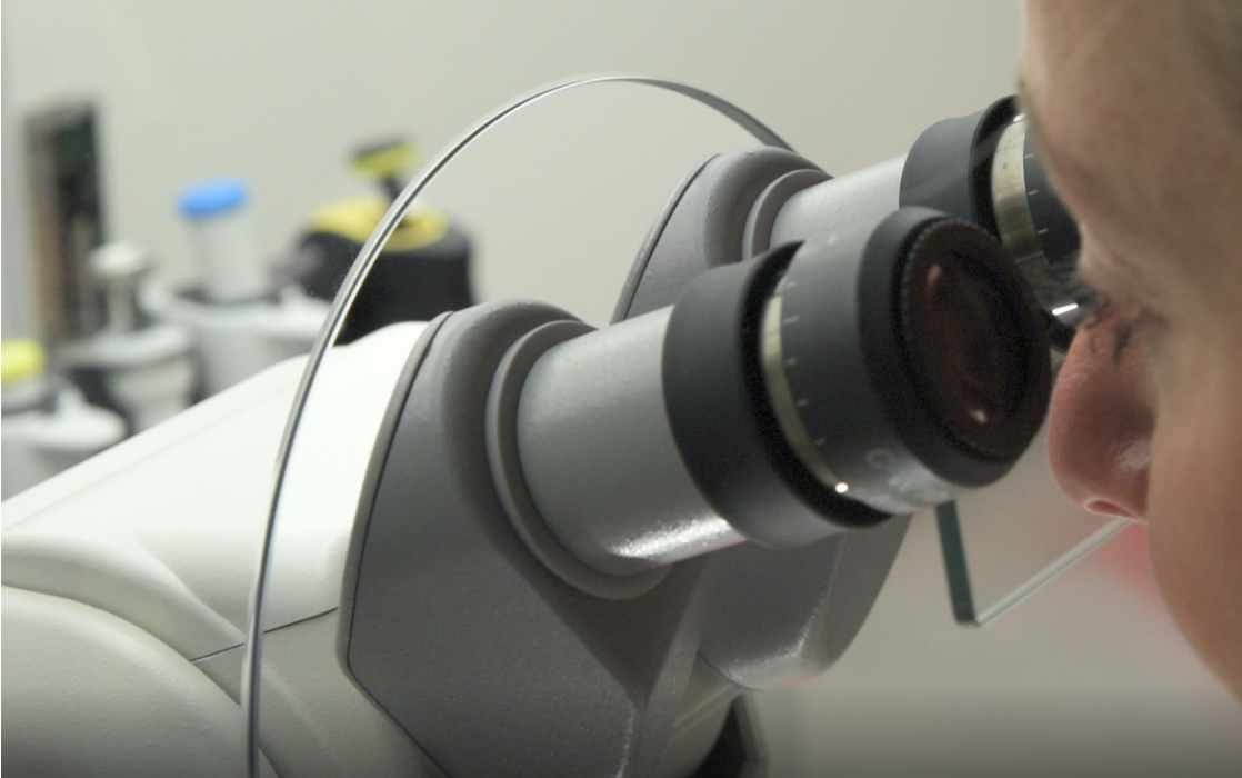 Examination Microscope